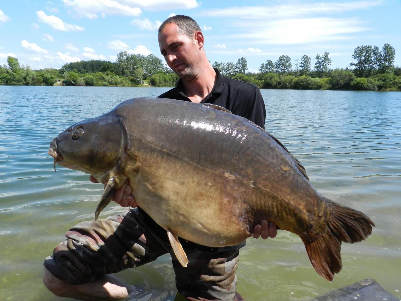 Franck Miroir 25 kg